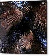 Abstract Photo 100111 Acrylic Print