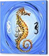 Abstract Sea Horse Acrylic Print by J Vincent Scarpace