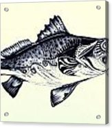 Abstract Speckled Trout Acrylic Print by J Vincent Scarpace