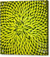 Abstract Sunflower Pattern Acrylic Print