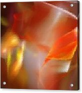 Abstract Under Glass Acrylic Print