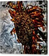 Abstract Watercolor Sunflower Acrylic Print