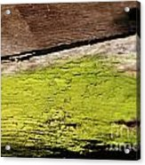 Abstract With Green Acrylic Print