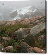 Acadia National Park Foggy Coast Acrylic Print by Chris Hill