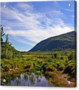Acadian Marsh Acrylic Print