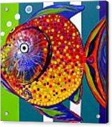 Acidfish 60 Acrylic Print