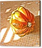 Acorn Squash Acrylic Print