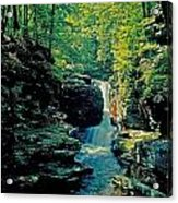 Adams Falls Acrylic Print