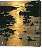 Aerial Shot, Tangier Island, Chesapeake Acrylic Print