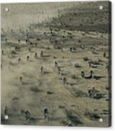 Aerial View Of Hundreds Acrylic Print