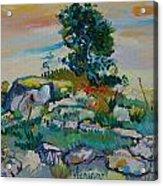 after Van Gogh 13 Acrylic Print
