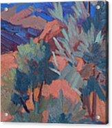 Afternoon Light - Santa Rosa Mountains Acrylic Print