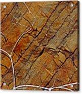 Against Rock Acrylic Print