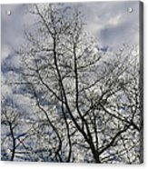 Against The Clouds Acrylic Print