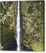 Akaka Falls Iv Acrylic Print