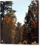 Alabama Mountainside October 2012 Acrylic Print