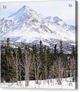Alaska Range Peak Acrylic Print