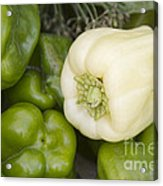 Albino Bullnose Pepper Acrylic Print