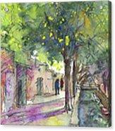 Albufera De Valencia 17 Acrylic Print