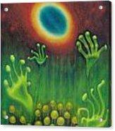 Alien Plants Acrylic Print