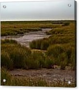 All Hallows Marshes Acrylic Print