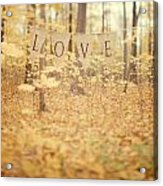 All Is Love Acrylic Print