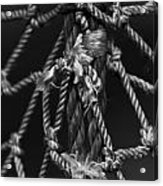 All Tied Up Acrylic Print