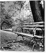 Alone In The Park Acrylic Print by Sarai Rachel