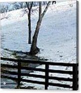 Alone On A Hill Acrylic Print by Paul Roger Ballard