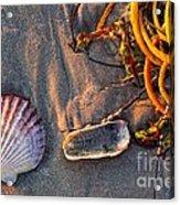 Along The Beach Texas Acrylic Print