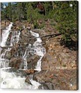 Alpine Creek Falls Lake Tahoe Acrylic Print