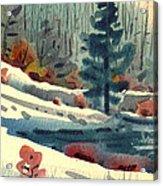 Alpine Meadow Acrylic Print