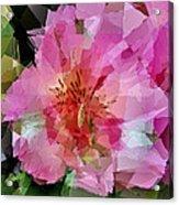 Alstroemeria Cubist Style Acrylic Print