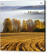 Altai Foothills Acrylic Print