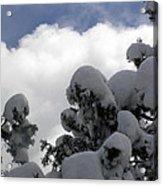 Amazing Arizona Winter Skies Acrylic Print