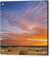 Amazing Sunset Over Pasture Acrylic Print