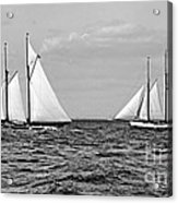 America's Cup Contenders Idler And Hildegarde 1901 Bw Acrylic Print by Padre Art