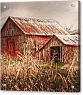 America's Small Farm Acrylic Print