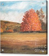 Amid The Tranquil Presence Of Change Acrylic Print