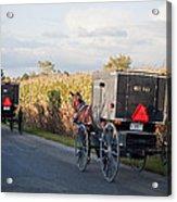 Amish Buggies October Road Acrylic Print