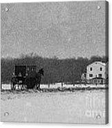 Amish Buggy Black And White Acrylic Print