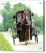 Amish Buggy On The Road Acrylic Print