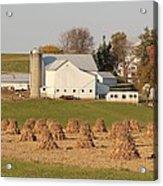 Amish Countryside Acrylic Print