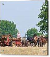 Amish Manure Spreader Acrylic Print