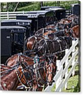 Amish Parking Lot Acrylic Print by Tom Mc Nemar