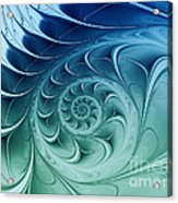 Ammonite Acrylic Print