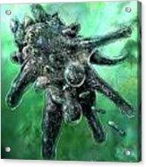 Amoeba Green Acrylic Print
