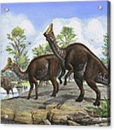 Amurosaurus Riabinini Dinosaurs Grazing Acrylic Print