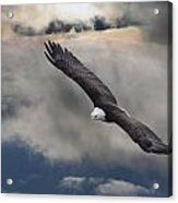 An Eagle In Flight Rising Above The Acrylic Print by Robert Bartow