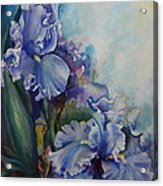 An Iris For My Love Acrylic Print